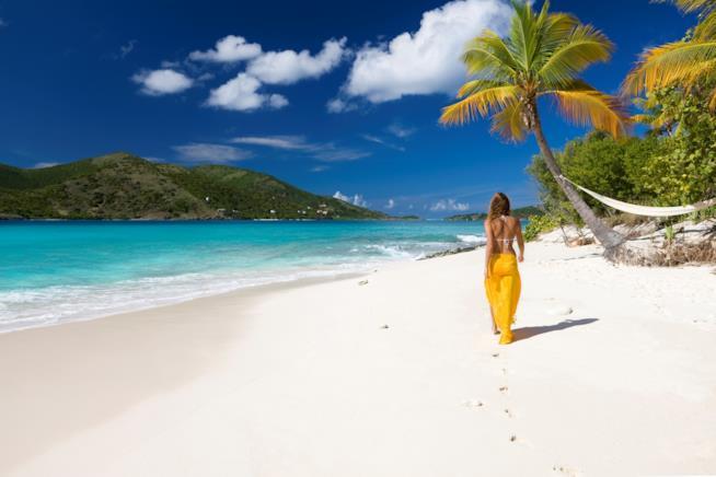 Una spiaggia da sogno dei Caraibi