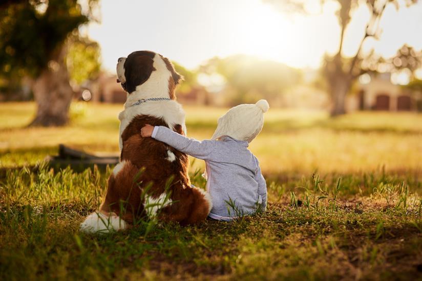 Bambino seduto accanto al cane