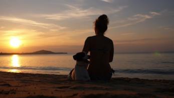 Profili di una donna ed un cane sulla spiaggia al tramonto