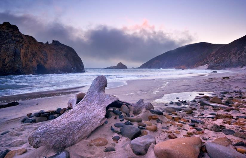 I cristalli di manganese danno alla spiaggia di Pfeiffer Beach una colorazione violacea