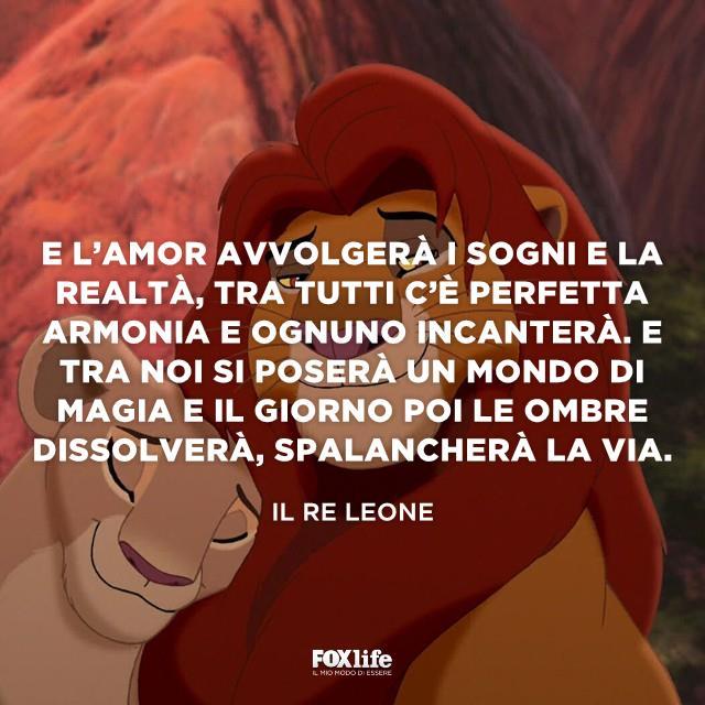 Primo piano Re Leone e leonessa