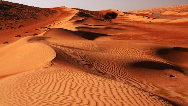 Oman tour deserto