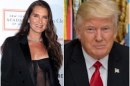 Brooke Shields e Donald Trump