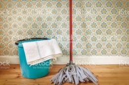 Set per pulire i pavimenti di casa
