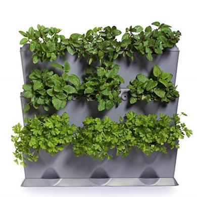 Giardino verticale per 9 piante