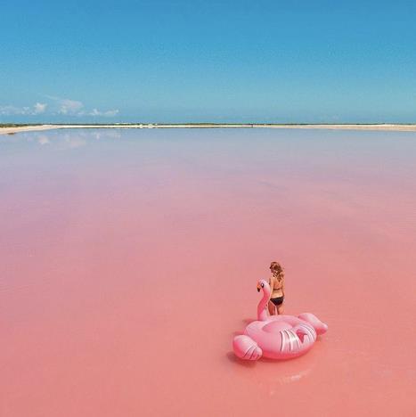 Una ragazza entra in un mare rosa con un fenicottero gonfiabile