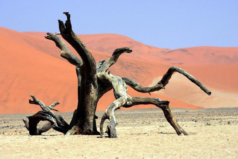 Namibia 2018 deserto rosso