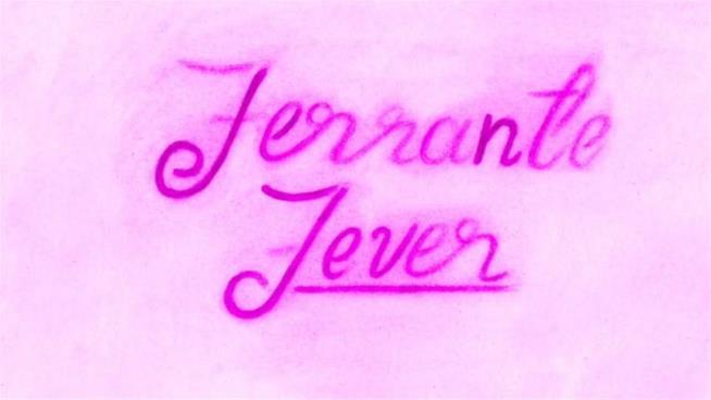 Jonathan Franzen in Ferrante Fever
