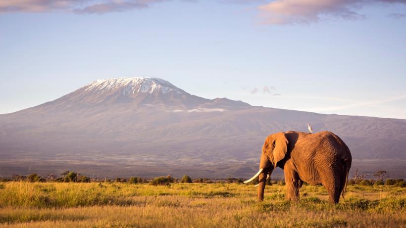 Amboseli National Park in Kenya