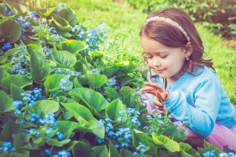 Bambina guarda i fiori
