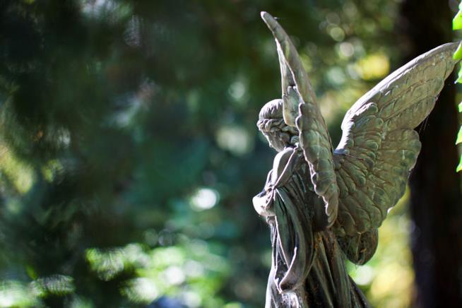Statua di angelo fotografata di spalle