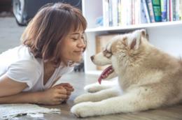 Una donna e un cane in salotto