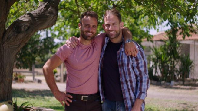 Il Contadino Cerca Moglie 4 i fratelli green siciliani