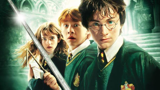 Harry Potter e i suoi amici