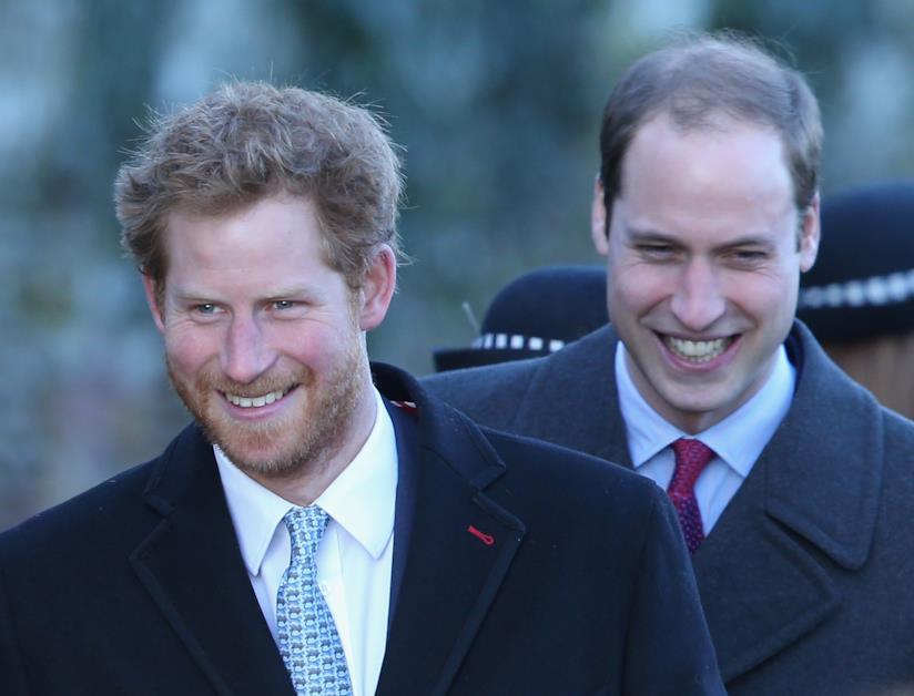 Il Principe Harry e suo fratello William
