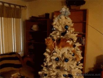 Un gatto fa cadere l'albero di Natale