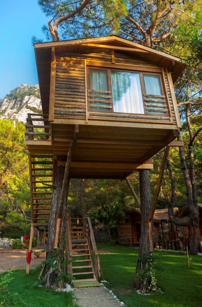 Una casetta in legno nel bosco sopraelevata sugli alberi