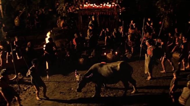 Il sacrificio del bufalo in Apocalypse Now