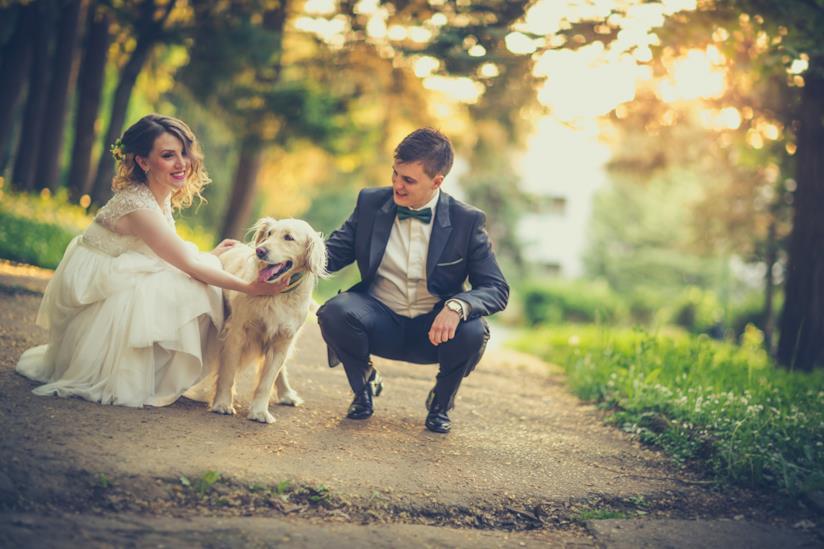 Coppia di sposi accarezza il cane