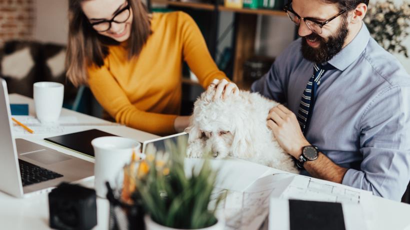 Colleghi con cane in ufficio