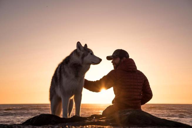 Loki e Kelly in riva al mare si godono il tramonto
