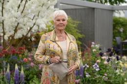 L'attrice Judi Dench al Chelsea Flower Show