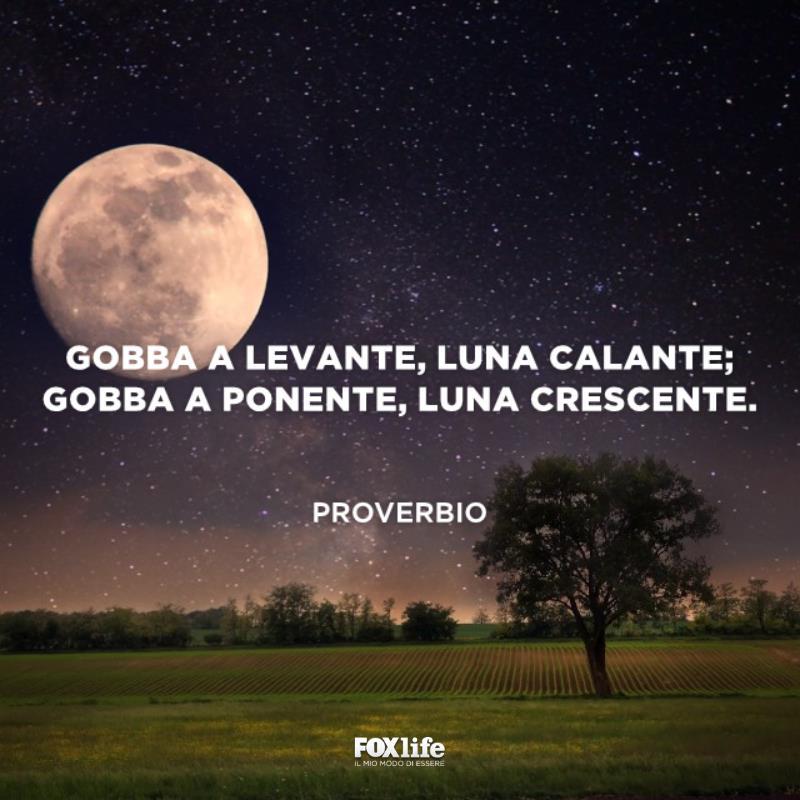 Campagna con un cielo stellato e la luna piena