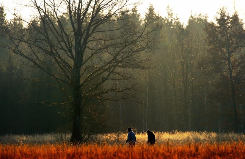 Due persone camminano nella natura