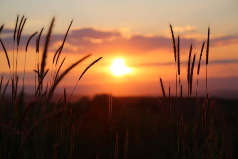 Tramonto del sole in campagna