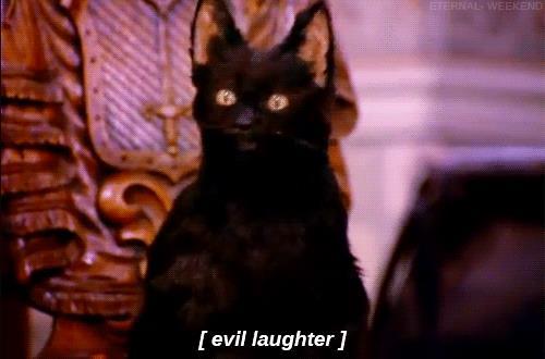 Salem e la sua risata malefica