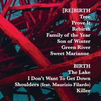 Wrongonyou tracklist Rebirth