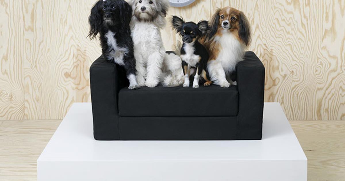 Ikea lancia una linea di mobili per cani e gatti - Letto per cani ikea ...