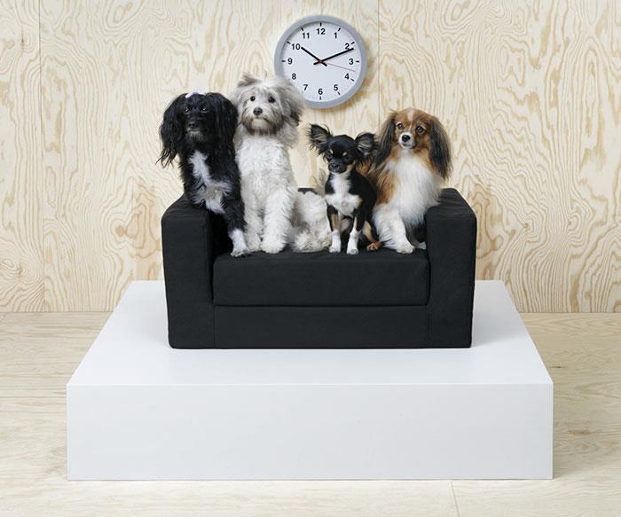 Un letto/divano per animali, con quattro cani sopra