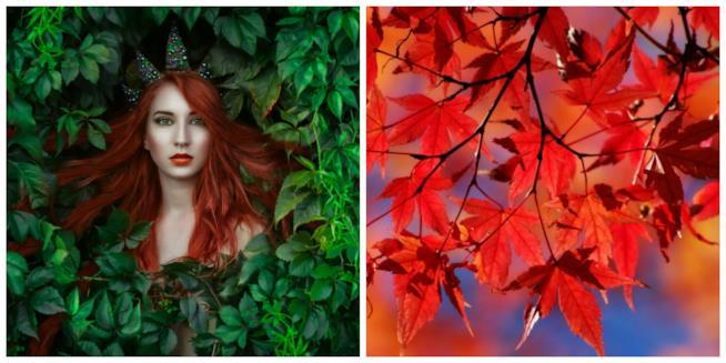 Capelli rossi in un collage con le foglie
