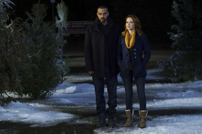 Sarah Drew e Jesse Williams in Grey's Anatomy 13