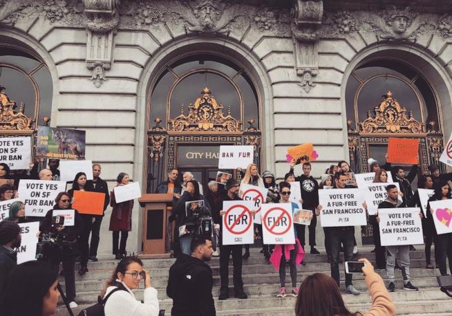 La folla al comunie di San Francisco per il divieto di vendita delle pellicce