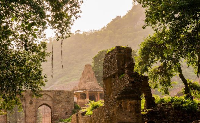 Il forte di Bhangarh immerso nel verde