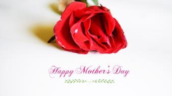 Una rosa rossa e un augurio per la Festa della Mamma