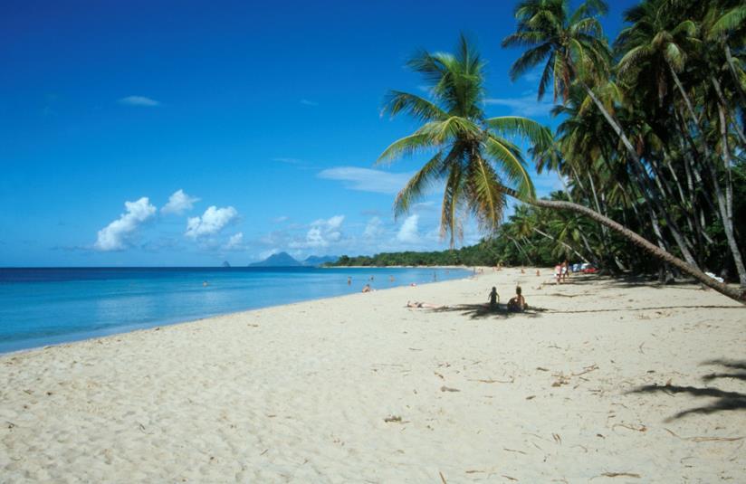 Caraibi, una spiaggia di Martinica