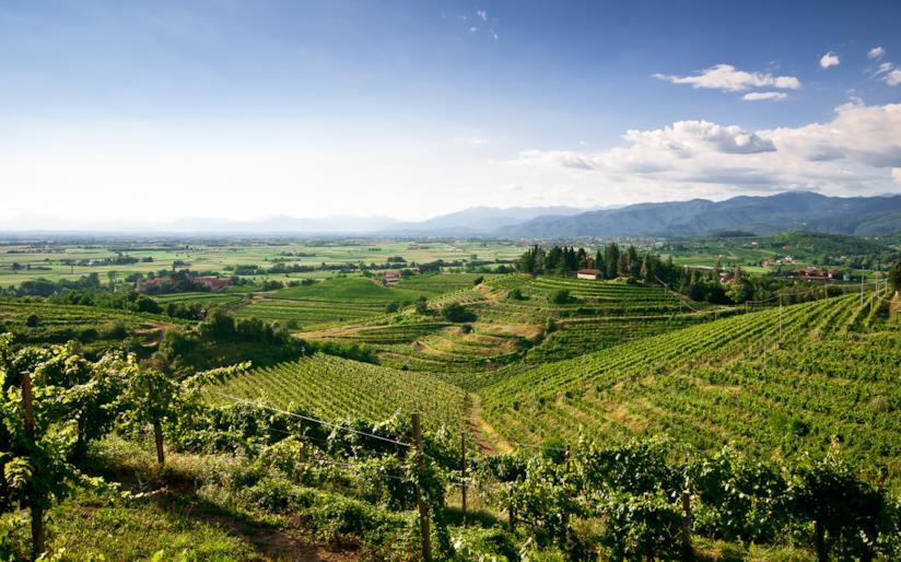 Veduta di campagna nel Friuli Venezia Giulia