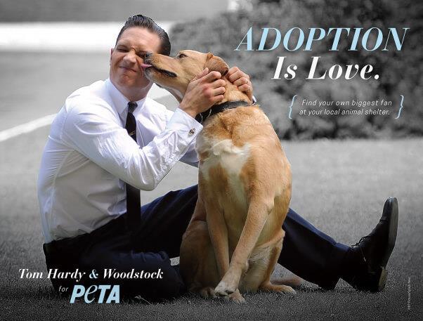 Tom Hardy insieme al cane Woody testimonial per Peta