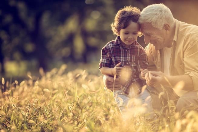 Nonno e nipote in un campo di grano