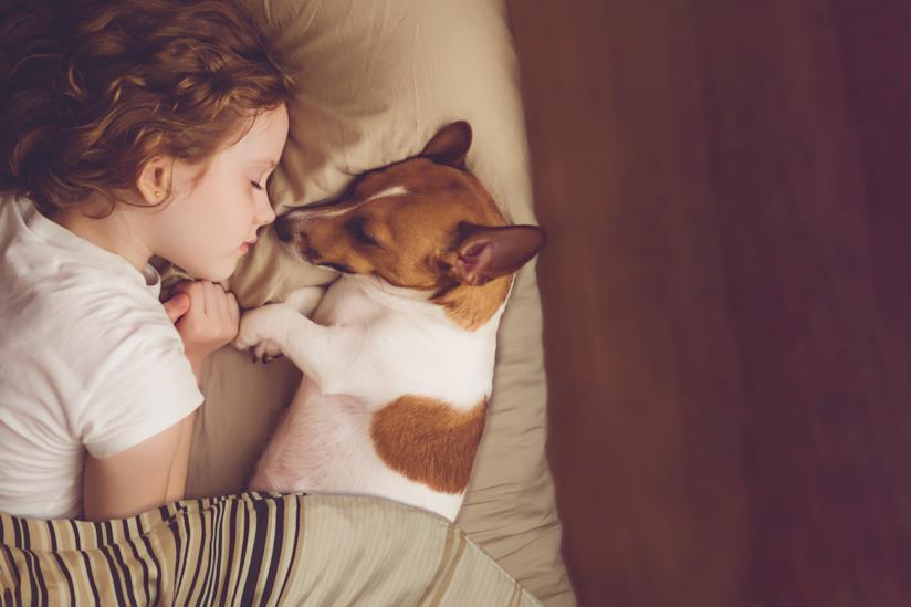 Bimbo dorme con un cagnolino