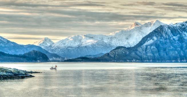Le 5 destinazioni più pet-friendly: Norvegia