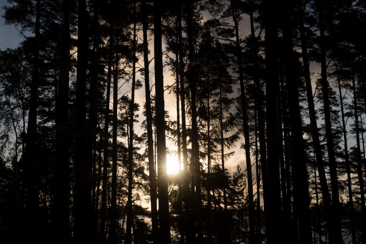 L'isola di Supershe per sole donne: i boschi