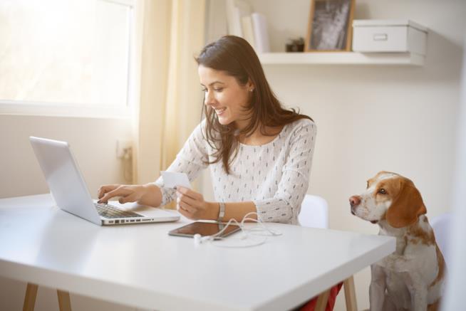 Una donna seduta al PC con un cane accanto