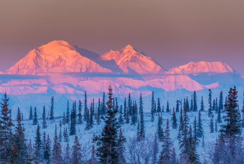 Paesaggio dell'Alaska, con vista del Monte Denali