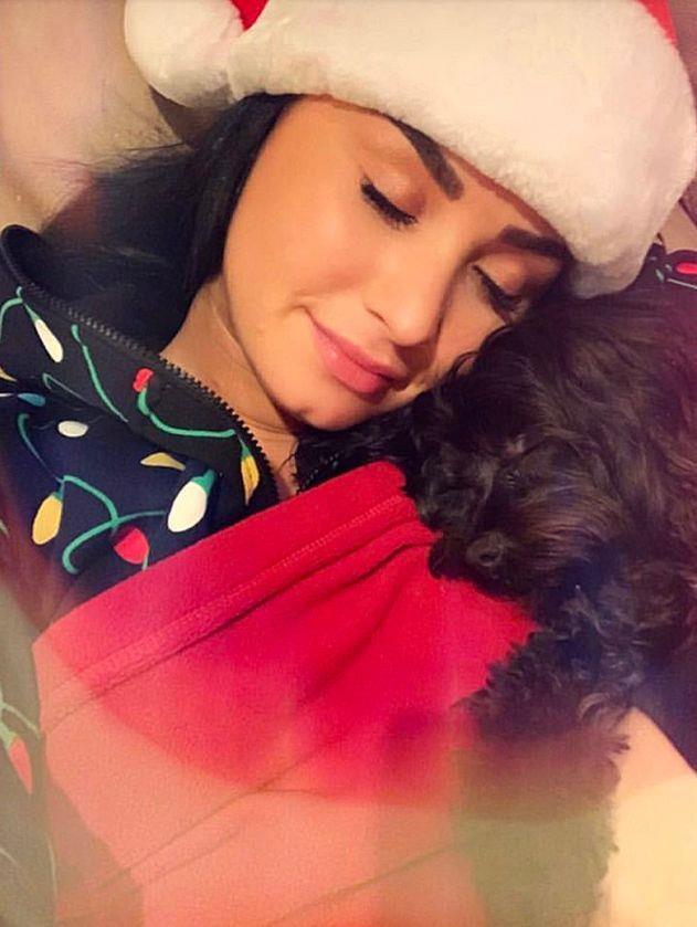 Demi Lovato festeggia il Natale col suo cucciolo