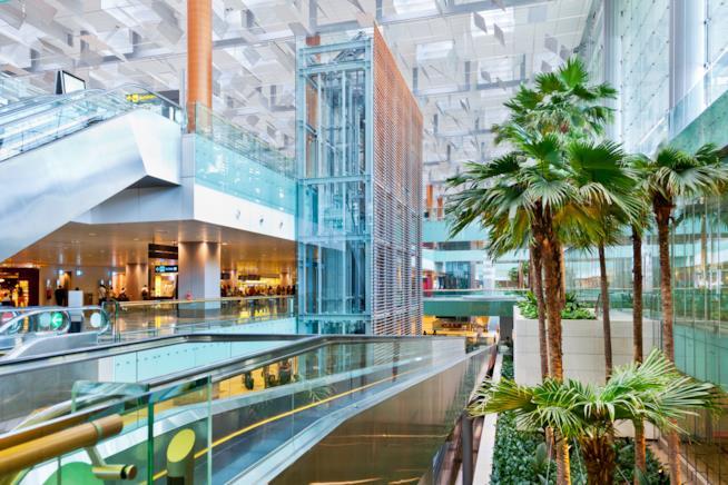 Panoramica del Terminal 3, al Changi