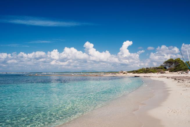Spiaggia di Es Trenc a Maiorca nelle Baleari